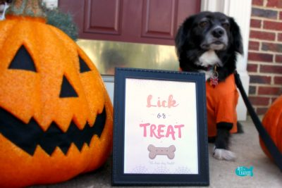 Lick or Treat Halloween Printable Cover